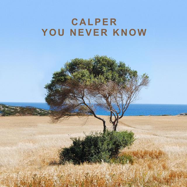 Calper You Never Know - Simon Field Remix